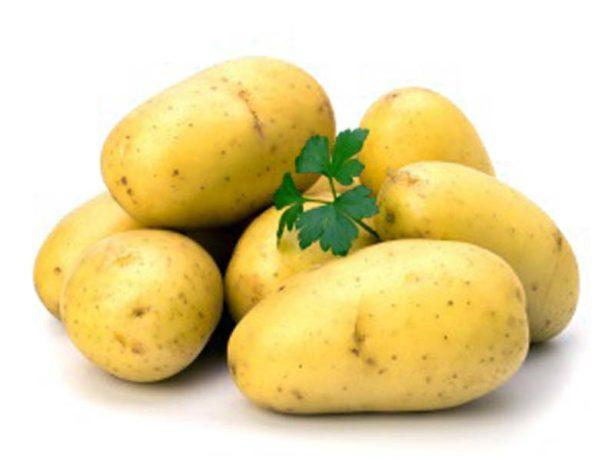 Картофель сорта Колетте