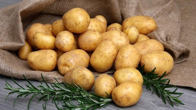 Характеристика и описание картофеля сорт Гала