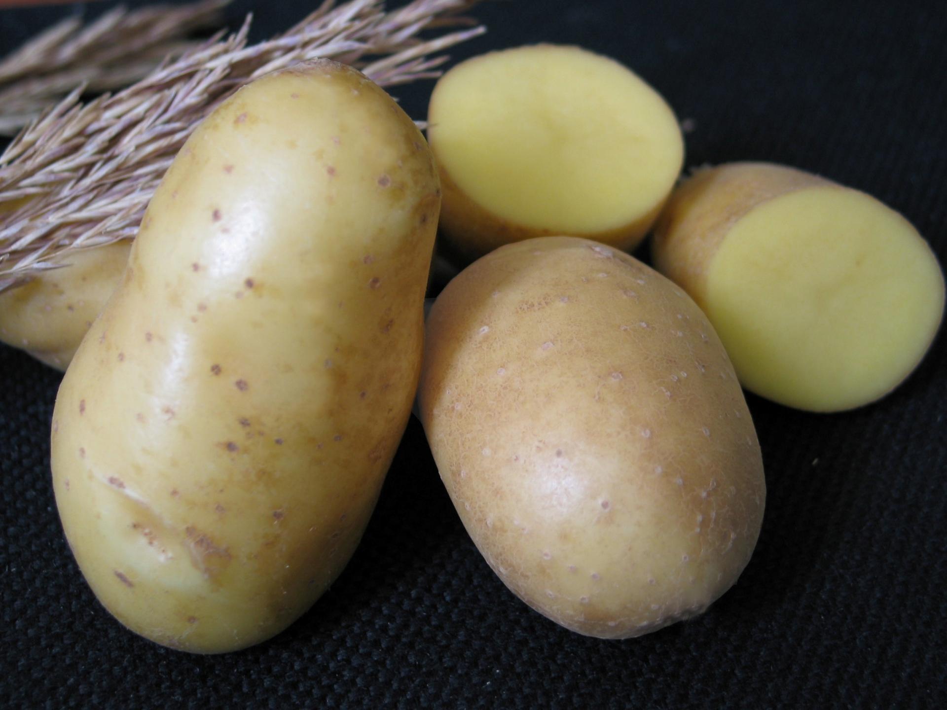 Картофель сорта Фрутелла – отличный выбор, как для частного огорода, так и для промышленного выращивания