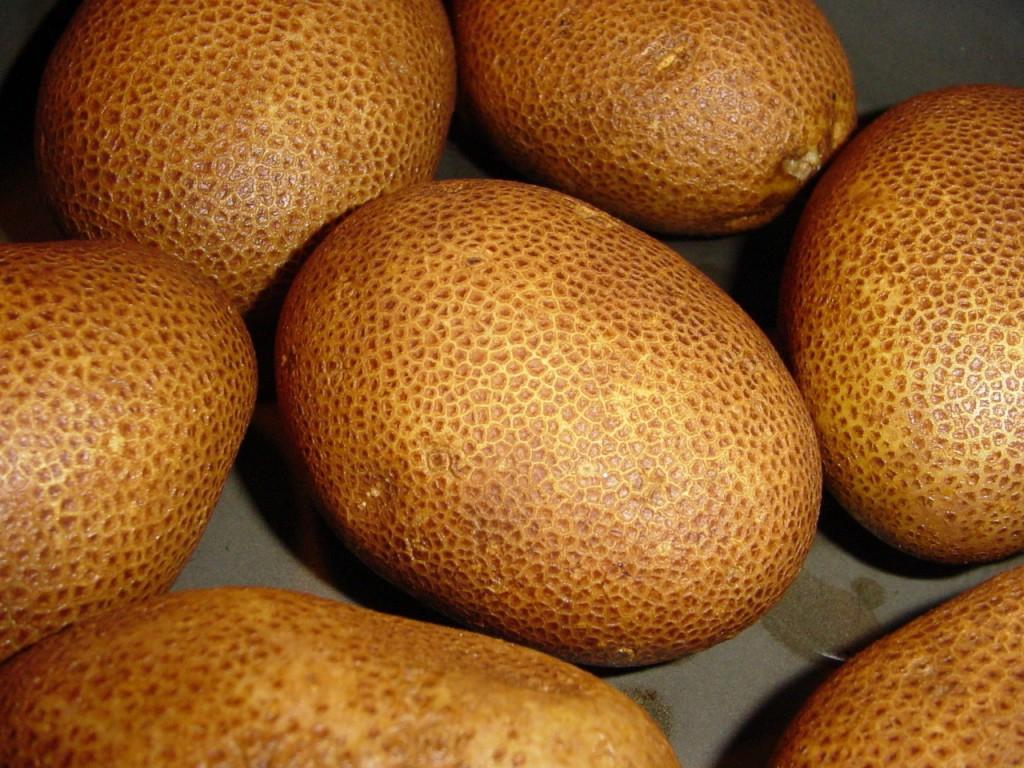 Картошка киви характеристика сорта