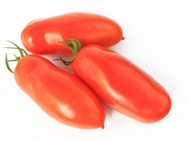 Вкусный сорт томата