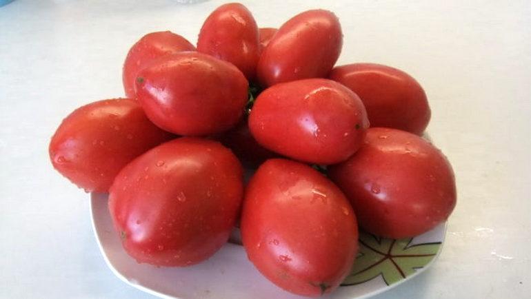 Томат Минусинские розовые Стаканы: характеристика и описание сорта, отзывы об урожайности помидоров