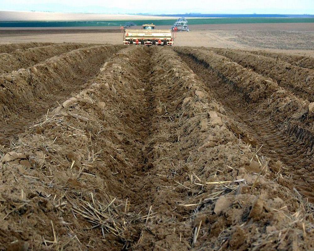 Гребни для посадки картофеля