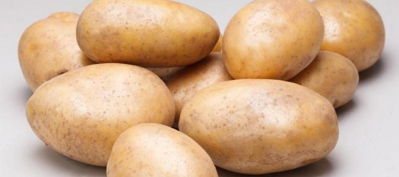 Картофель Дебют