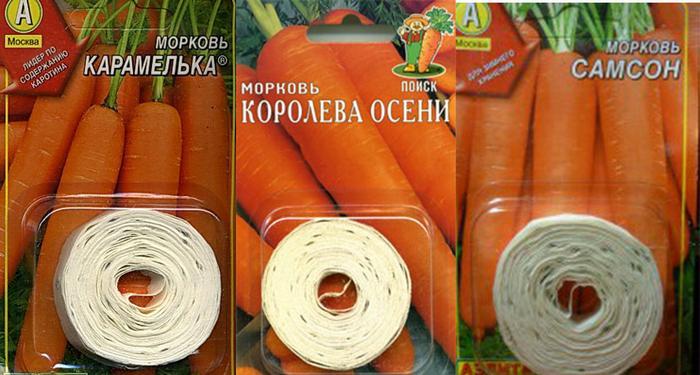 Семена моркови на ленте своими руками