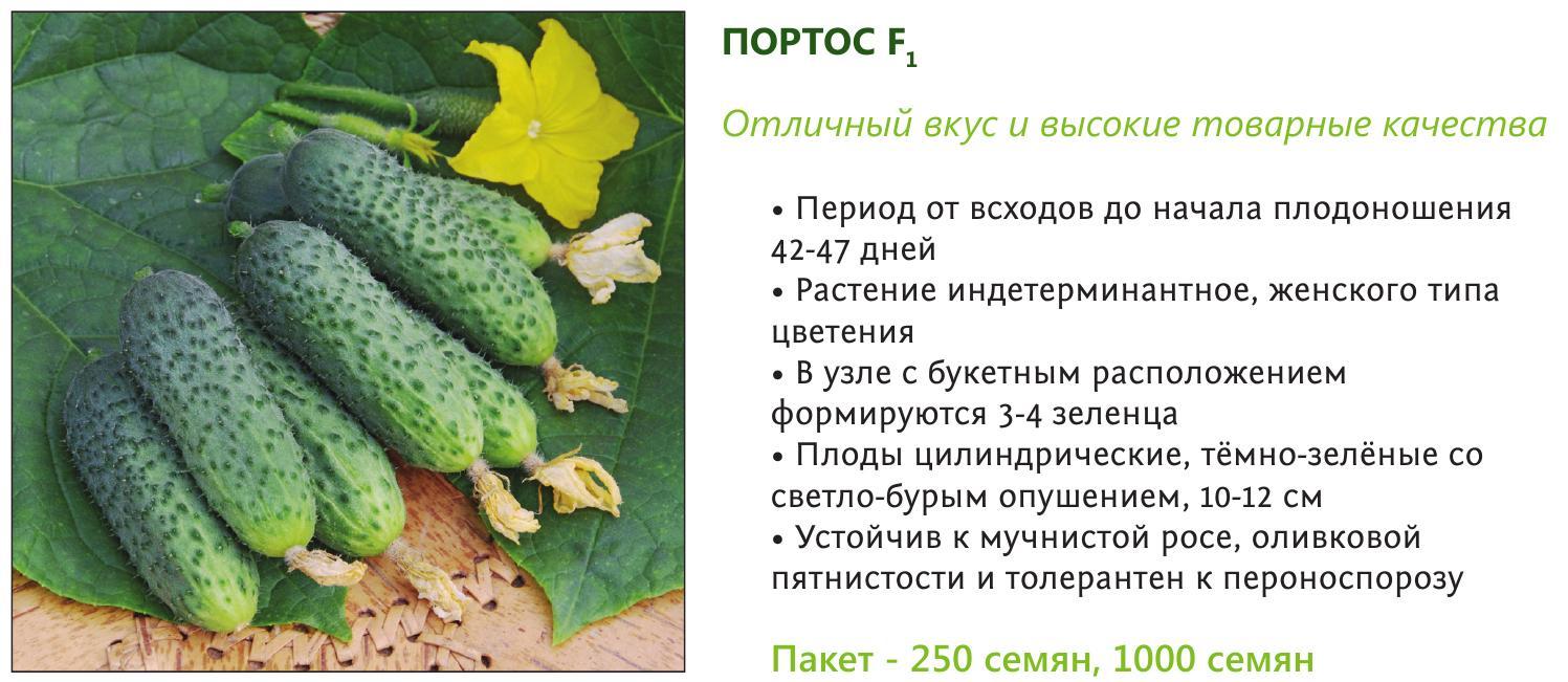 Огурец Портос семена