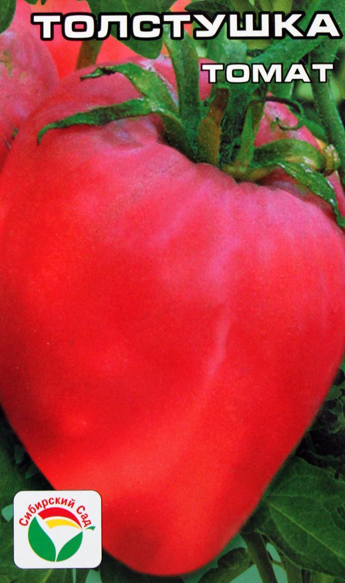 Характеристика и описание сорта томата Толстушка, его урожайность