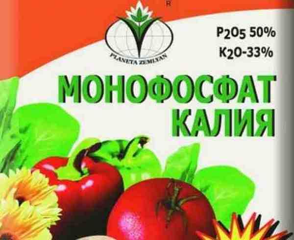 Монофосфат калия: применение удобрения, недостатки и аналоги
