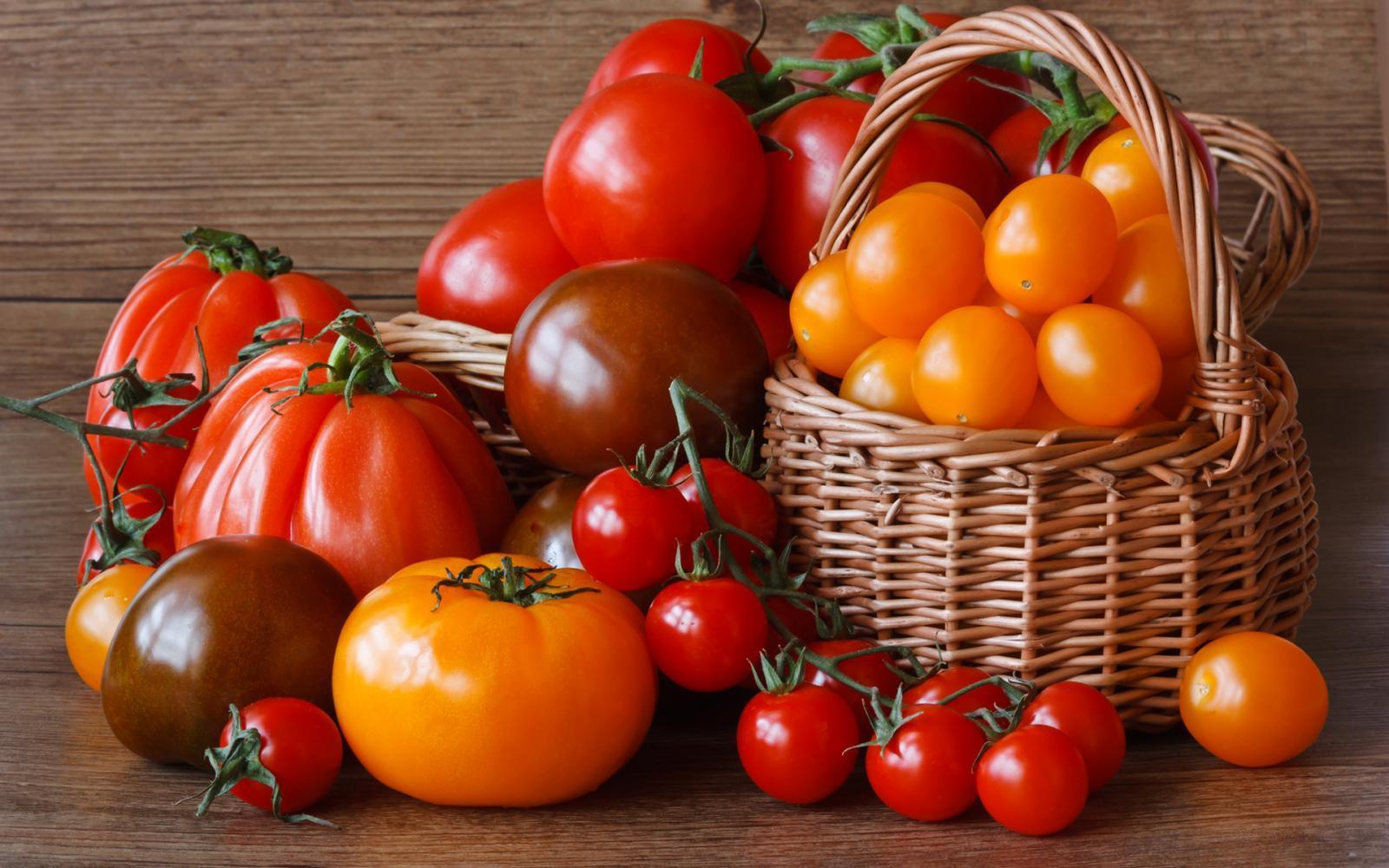 рассада помидор по 2 штуки в лунку