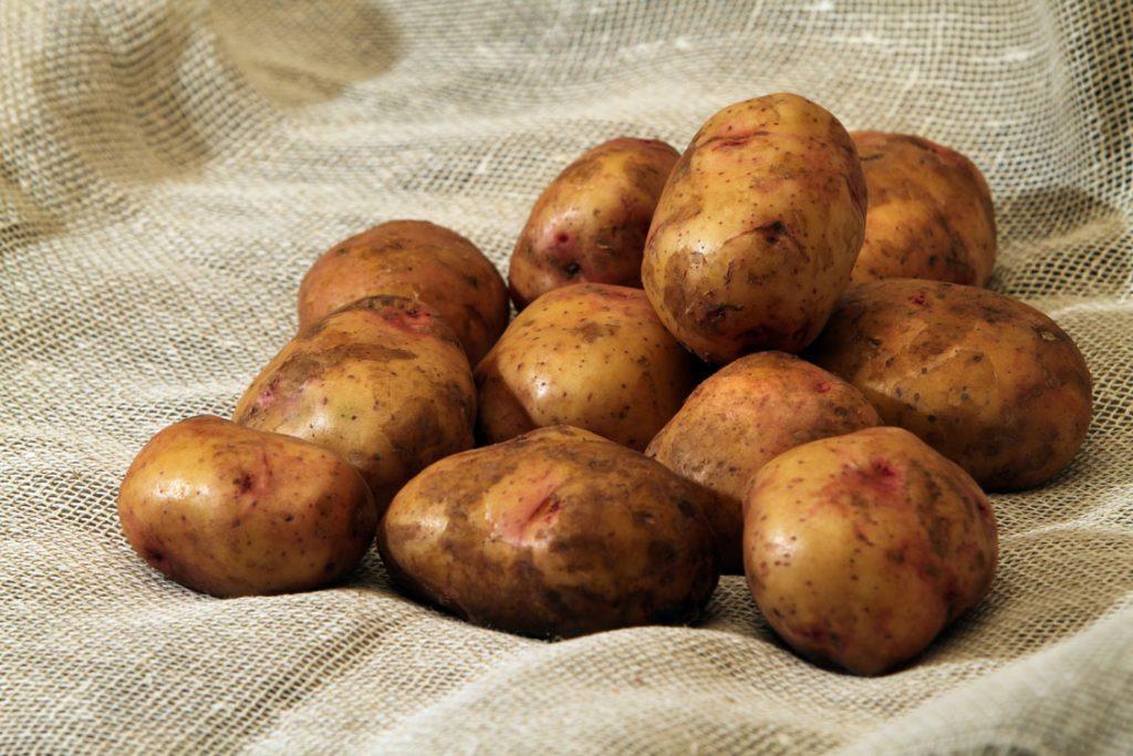 Благоприятные дни для посадки картофеля в мае