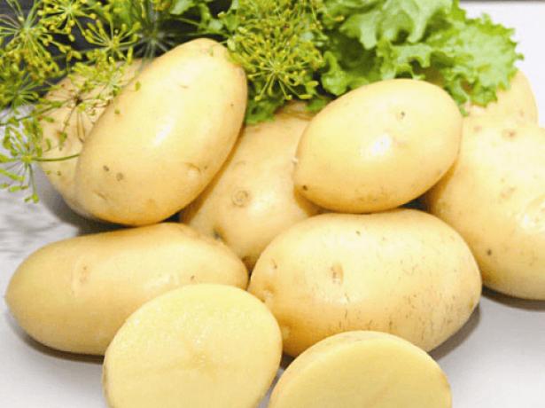Сорт картофеля дина