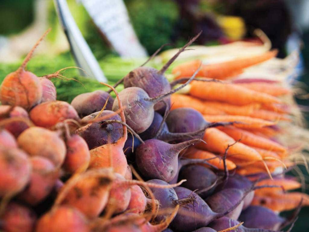 Что можно посадить после морковки