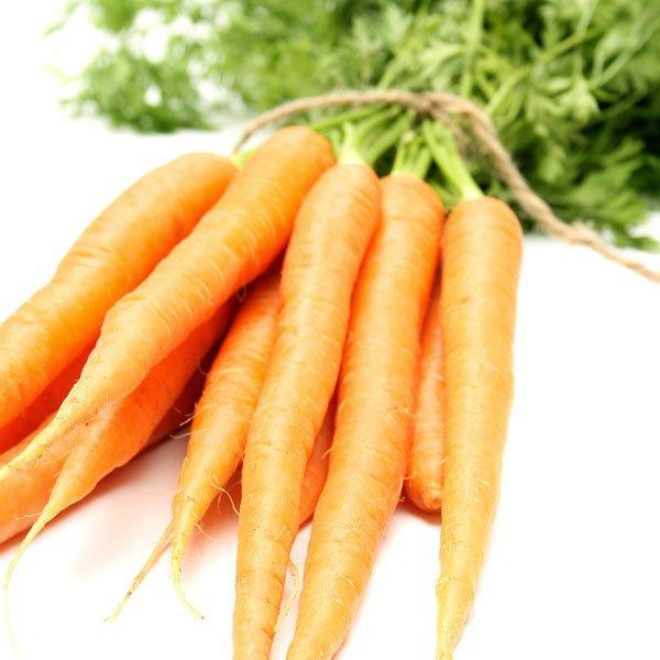 Морковь и свекла на одной грядке совместимость предшественники