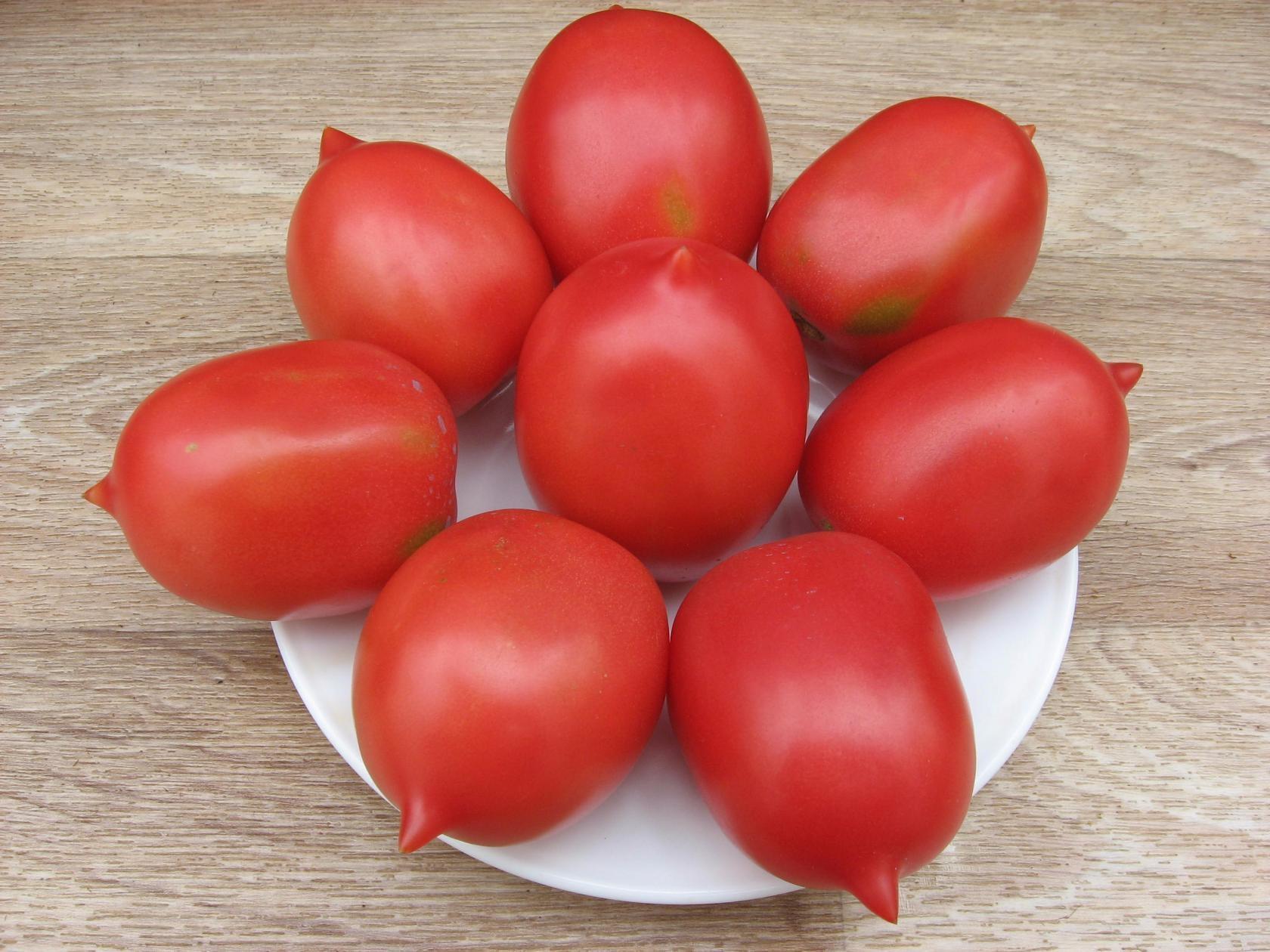 Помидоры де барао характеристика и описание сорта особенности выращивания