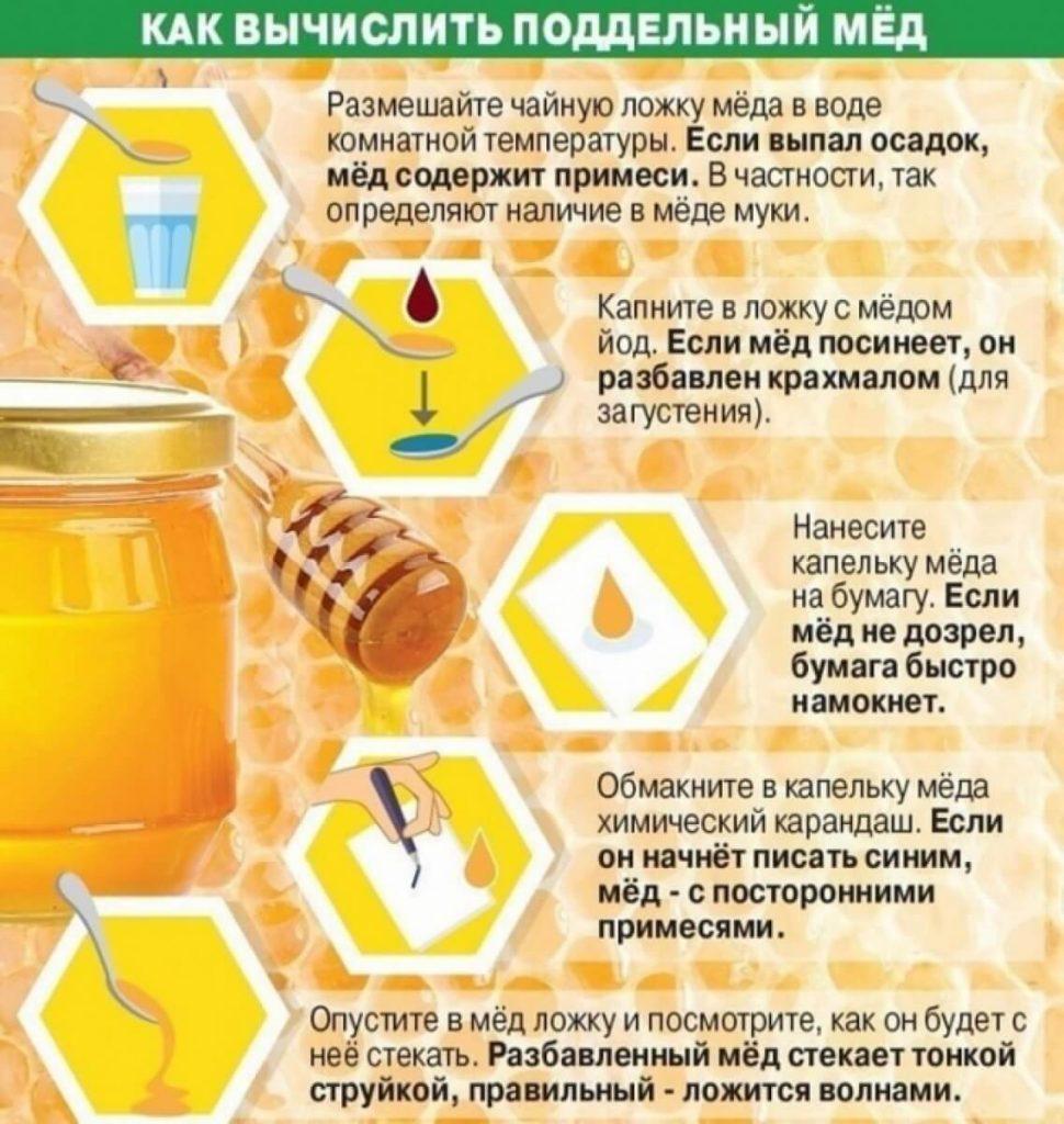 Липовый мед — хранение, состав, свойства и методы проверки