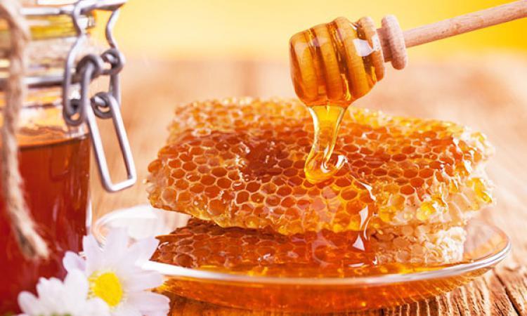 Проверка меда в домашних условиях