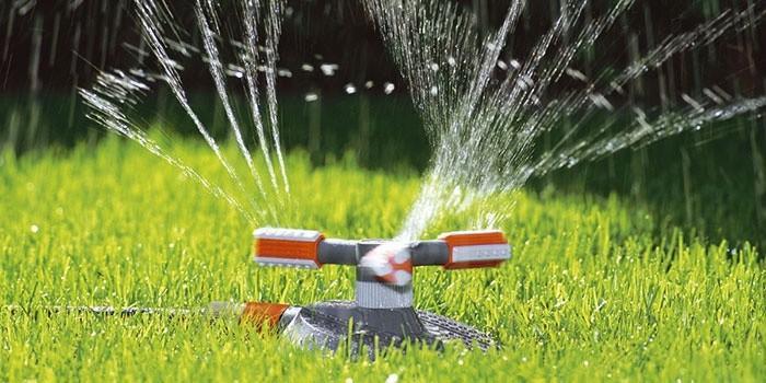 Распылитель для полива своими руками
