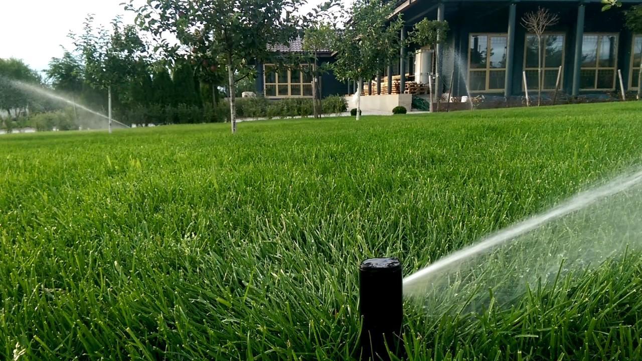 Как правильно выбрать систему полива для газона