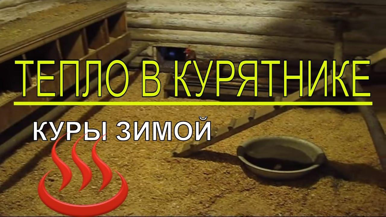 Как своими руками построить зимний курятник своими руками