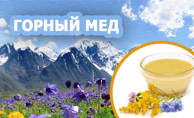 Горный мед: полезные свойства и противопоказания, алтайский мед