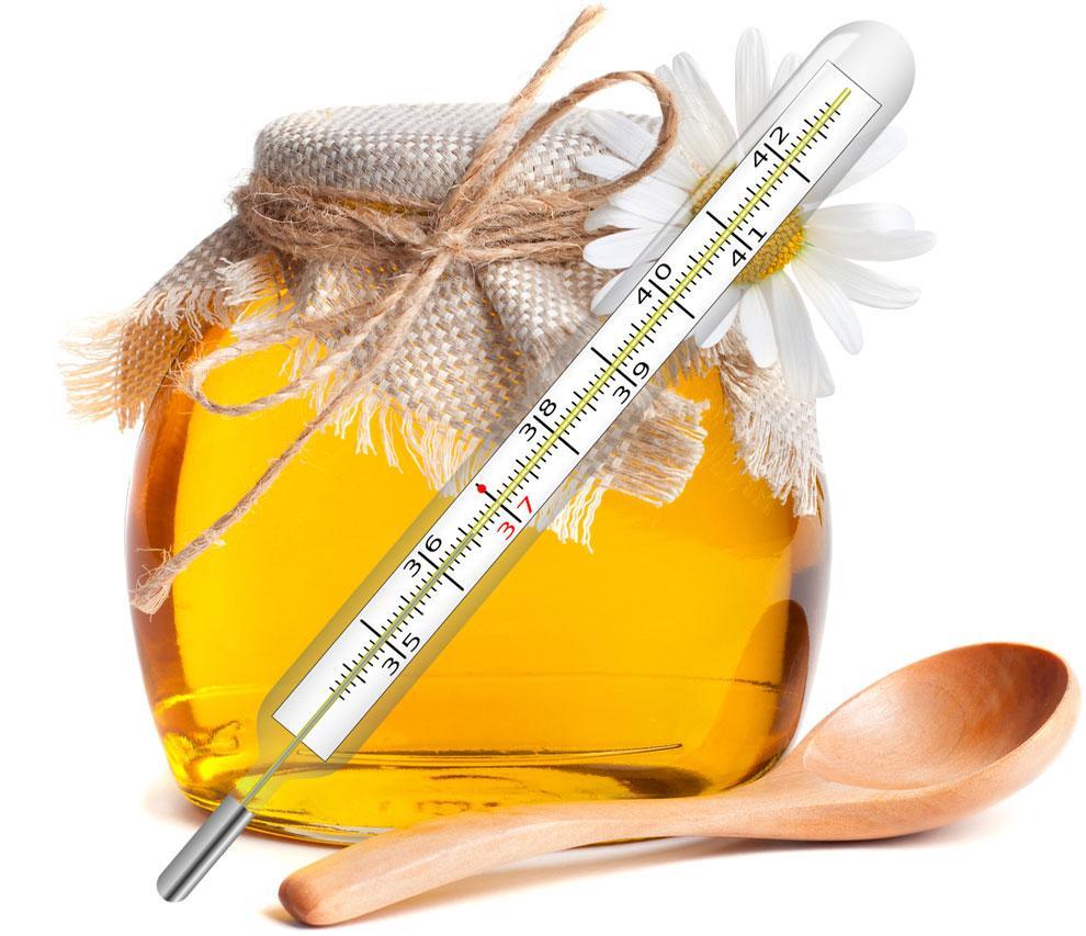 Можно ли принимать мед при температуре