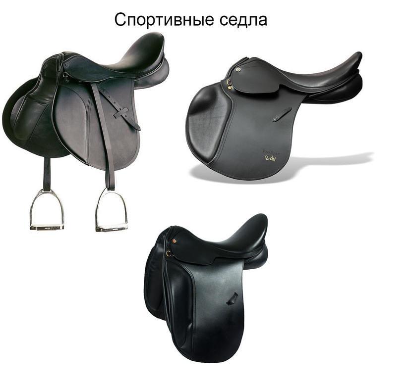бренда амуниция для лошади название с картинками наличие сроки